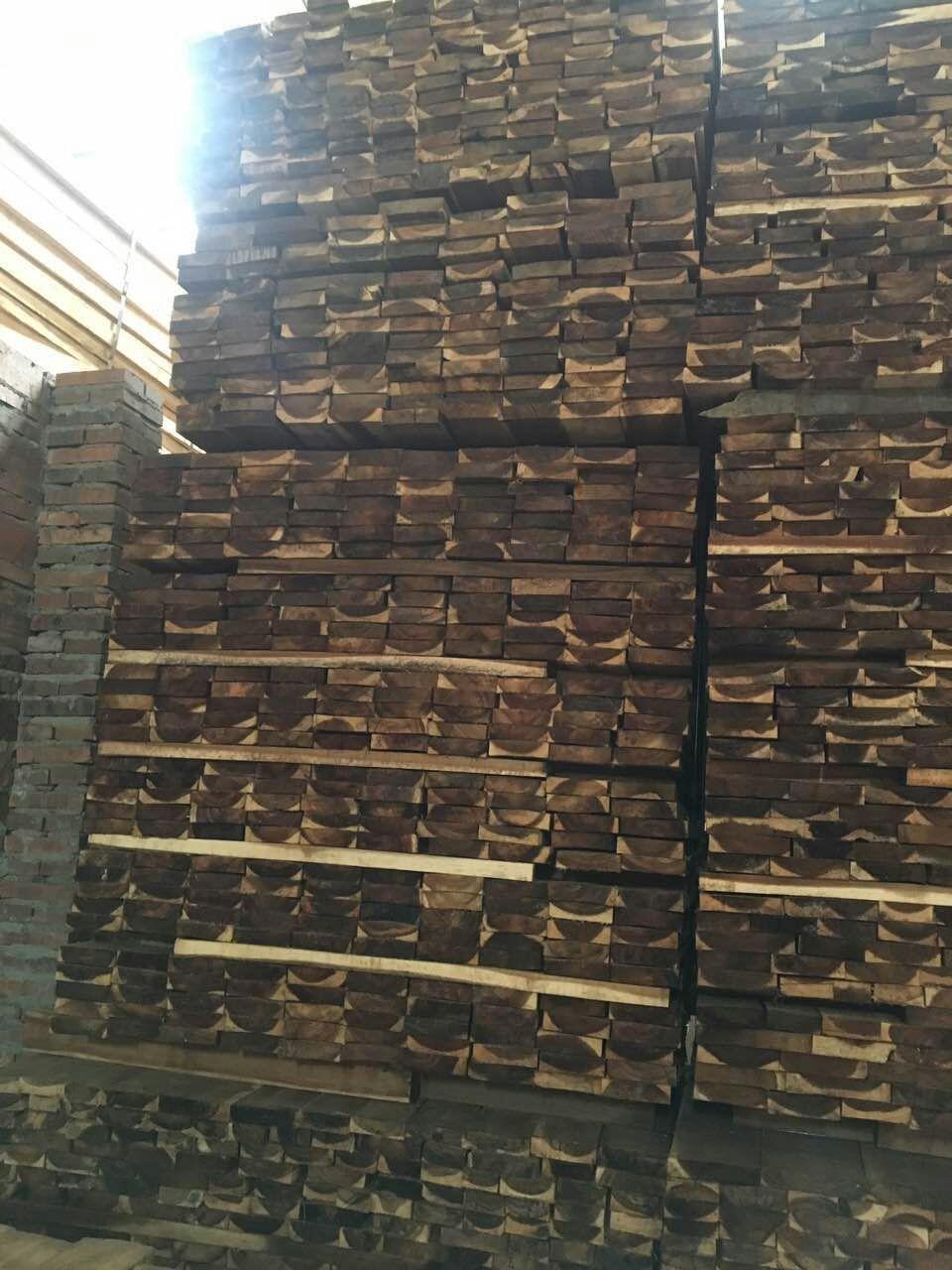 Acacia千赢国际登录千赢国际木材料